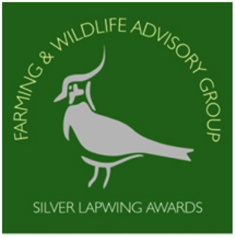 Silver Lapwing Awards