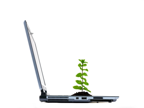 A laptop computer with a seedling isolated against a white background